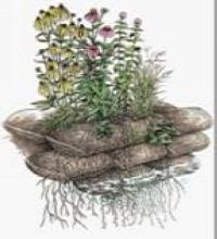三维生态袋护坡